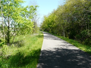 BikeTrail (8)