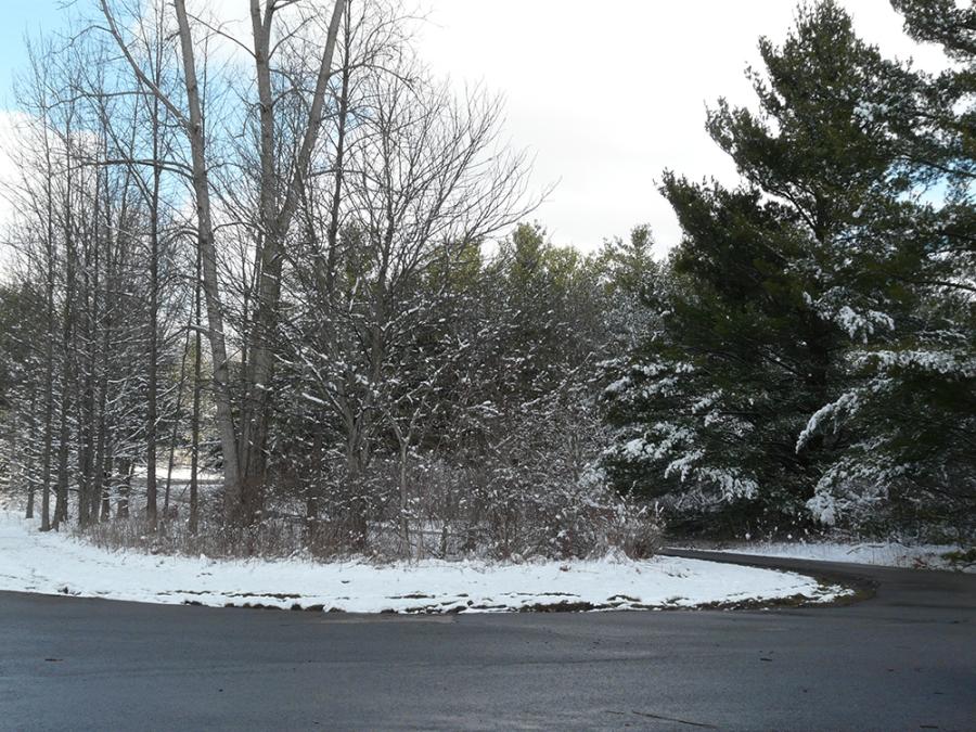 A_Winter