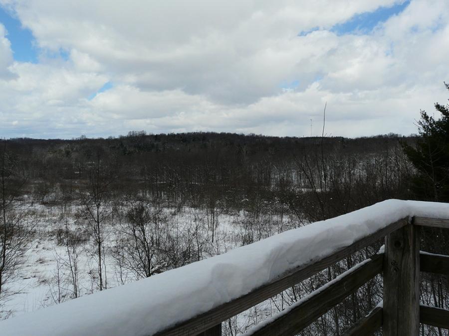 F_Winter